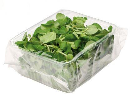 Frutta e verdura, secondo Legambiente il made in Italy è più buono e più sano